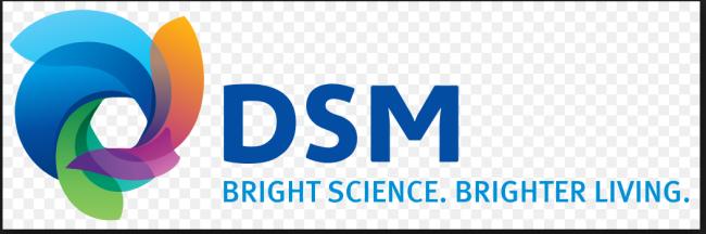 DSM2キャプチャ
