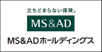 MS&ADキャプチャ