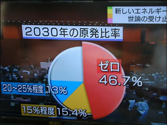 日本で実施された原発政策をめぐる討論型世論調査の結果