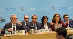 WTOキャプチャ