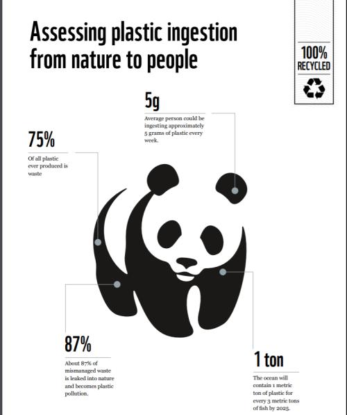 自然界から人間の体内に取り込まれるプラスチック