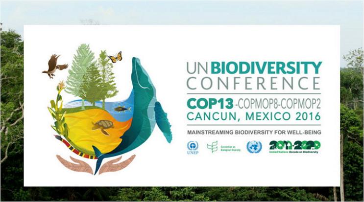 COP131キャプチャ