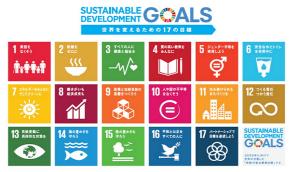 SDGsキャプチャ