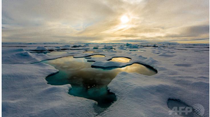Arcticキャプチャ