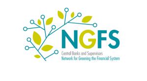 NGFS005キャプチャ