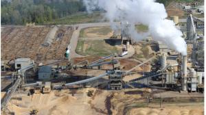 木質ペレット工場と原料となる大量の木材(米ノースカロライナ州:FOE Japanサイトより)