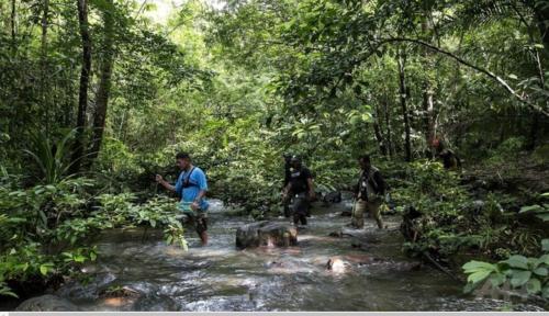 フィリピン・パラワン島の観光地エルニドに近い森林で、違法伐採者を見つけるチームを率いる同島の環境保護団体パラワンNGOネットワーク・インコーポレーテッド(PNNI)のリーダーの一人、エフレン・「タタ」・バラダレスさん(左)