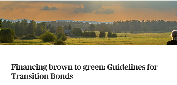 Transiton bond1キャプチャ
