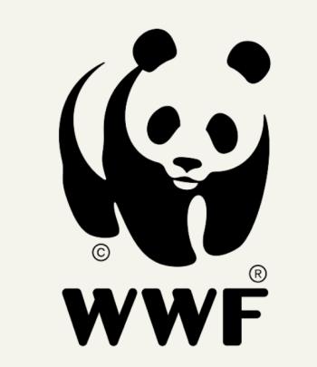 WWF4キャプチャ