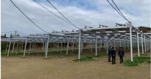 営農型ソーラーシェアリングにも取り組む