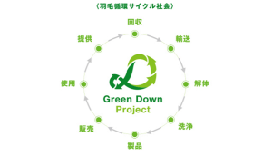 Greendawnprojectキャプチャ