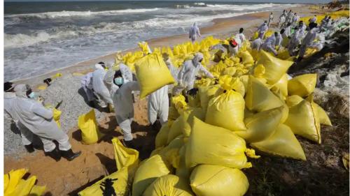 汚染された海岸で続けられる回収作業