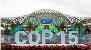 COP15キャプチャ