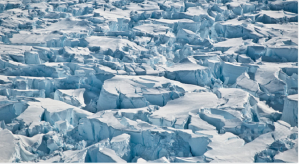 antarticキャプチャ