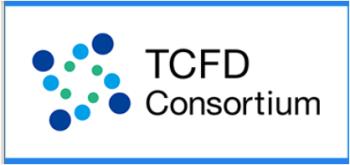 TCFD33キャプチャ