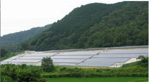 solaryamaキャプチャ