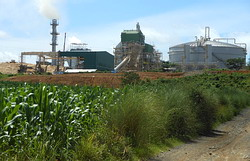 商業運転を始めた工場。トウモロコシ畑(手前)のすぐ上に工場廃水用の貯水池が作られた