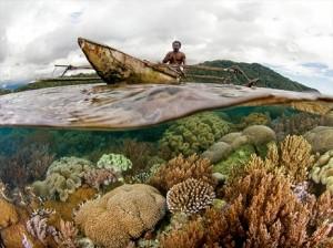 インドネシア東部、ラジャ・アンパット県バーズヘッド地域のサンゴ礁でボートをこぐ住民。人間や他の生物種にとっての海洋の重要性を評価する新しい指標「海洋健康度指標」が発表された。