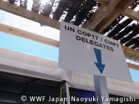WWF20111206h