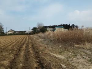 鉾田市の太陽光発電所建設候補地
