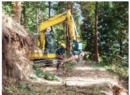 間伐を進め、林道を整備する作業