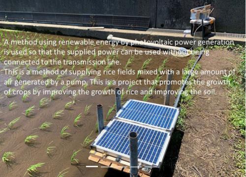 水田に設置された太陽光パネル付き装置