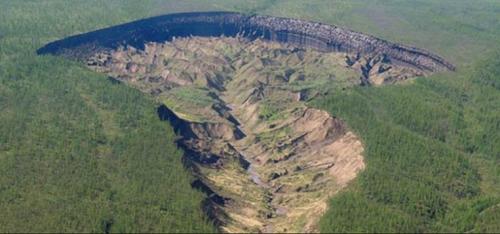 永久凍土の融解で突然沈んだ森林。シベリアの各地にある