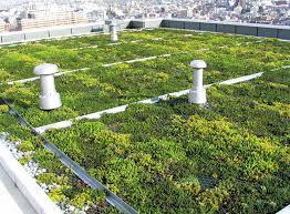 フランス 新設商業ビルの屋上緑...
