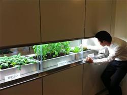 丸紅が販売を開始する共用スペースに野菜工場を併設した環境配慮型マンションのモデルルーム=東京都世田谷区