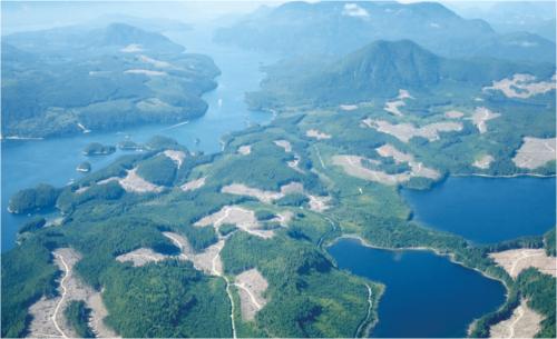 ゴルフ場ではない。カナダBC州での森林皆伐の状況
