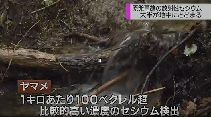 NHK22キャプチャ