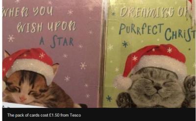 子ネコのクリスマスカードの中に・・・