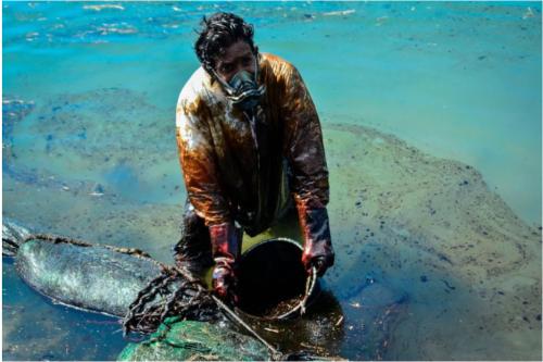 手作業で流出した油を回収する