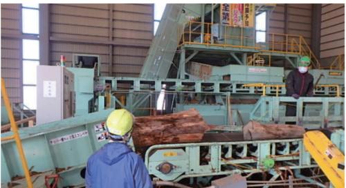 木質チップ製造設備(タケエイの青森・津軽バイオチップ会社の様子