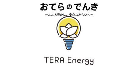 teraenergy1キャプチャ