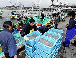 「私権操業」として水揚げされ、販売される福島の水産物