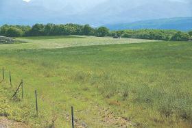 メガソーラーの誘致構想が浮上した七ケ宿町営柏木山放牧場