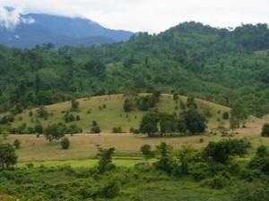 サイソンブン県ホム郡の影響村の様子(2012年7月撮影)。 ダムが建設されれば、水田耕作・野菜栽培・焼畑耕作・牧畜等 で生計を立てているモン族の住民は移転を余儀なくされる。